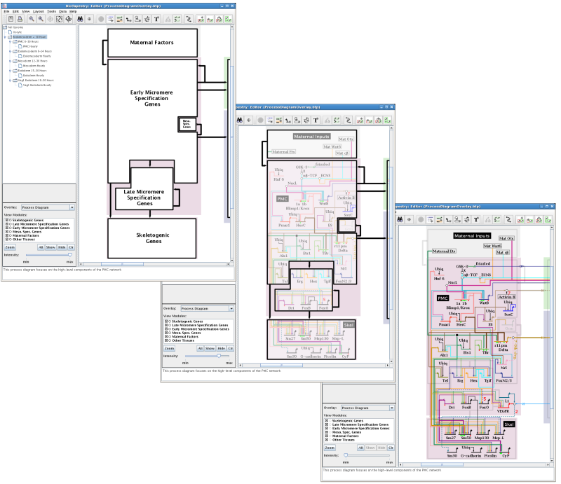 Process Diagram Support